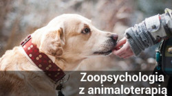 Odnośnik do Zoopsychologia z animaloterapią